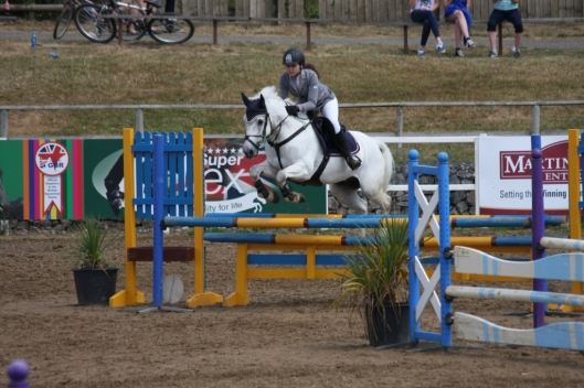 Another jump in the One Metre Amateur Class.  Photo: Team Equihunter