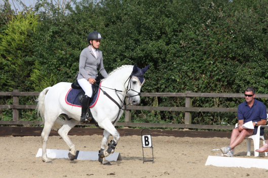 Brownie: Winning the 2013 NAF 2* Performance Awards at Weston Lawns Equitation
