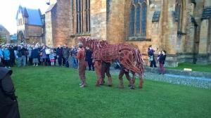 War Horse Joey Rescued