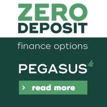 pegasus-equine-button2