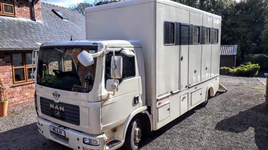 2017 Empire Classic Horsebox For Sale